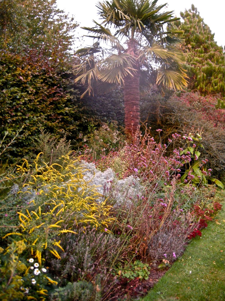 What do you see on your garden walks? 2012 | Forum topic | North ...