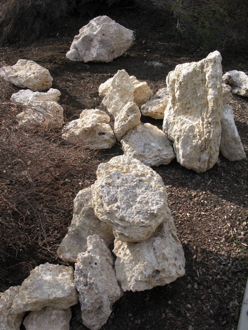 Image Result For How To Start A Rock Garden