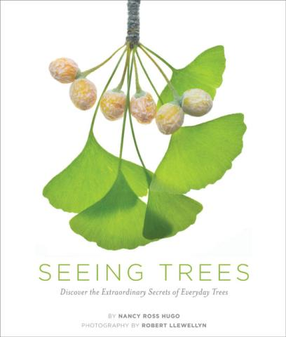 Seeing Trees book cover