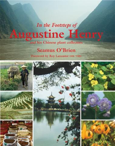 In the Footsteps of Augustine Henry: book cover