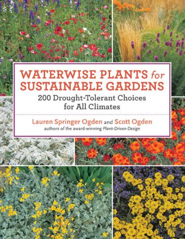 Waterwise Plants for Sustainable Gardens: book cover