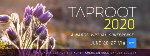 TAPROOT_2020_A_NARGS_Virtual_Conference