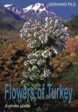 Flowers of Turkey: book cover
