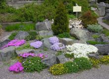 Memorial University of Newfoundland Botanical Garden